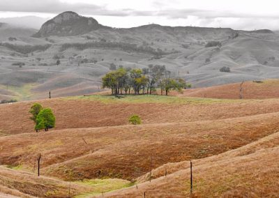 Views of Knapp Peak Scenic Rim